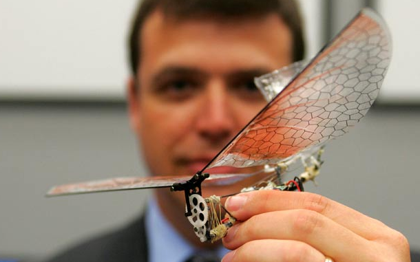 size of an insect sized robot flies